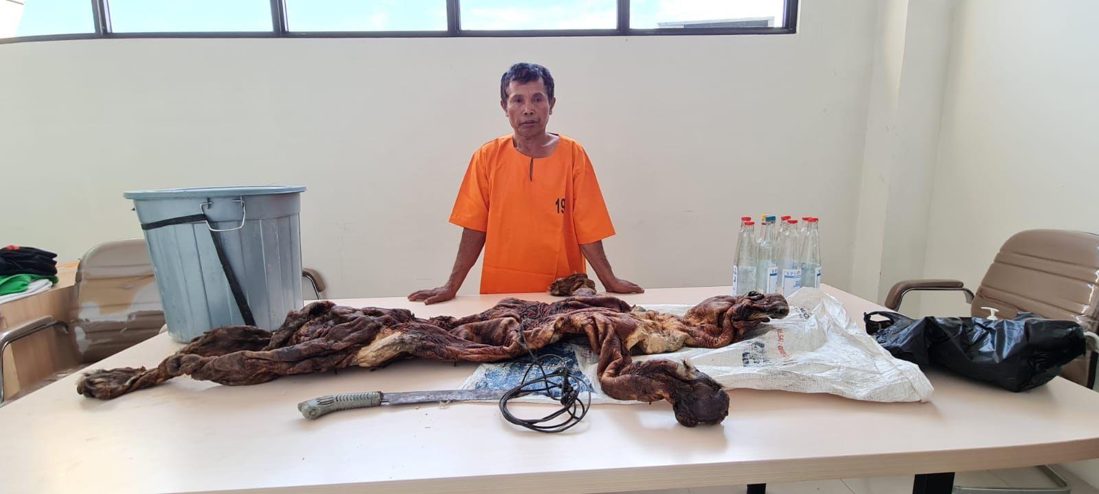 Foto BAT yang diamankan Tim Subdit. IV Tipidter Ditreskrimsus Polda Riau karena tertangkap tangan bawa kulit harimau.