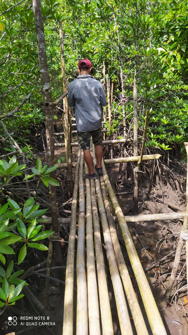 Jembatan Kayu Yang Menjadi Akses Ke Lokasi Perigi Hangtuah