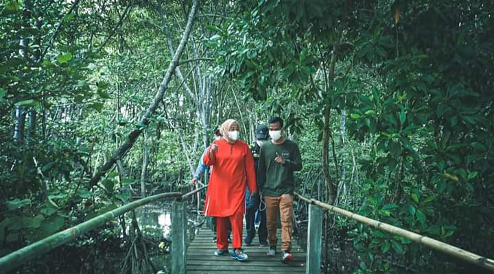 """Meninjau Kawasan Ekowisata Mangrove """"Pandang Tak Jemu"""" Kampung Bakau Serip, Sambau, Batam."""